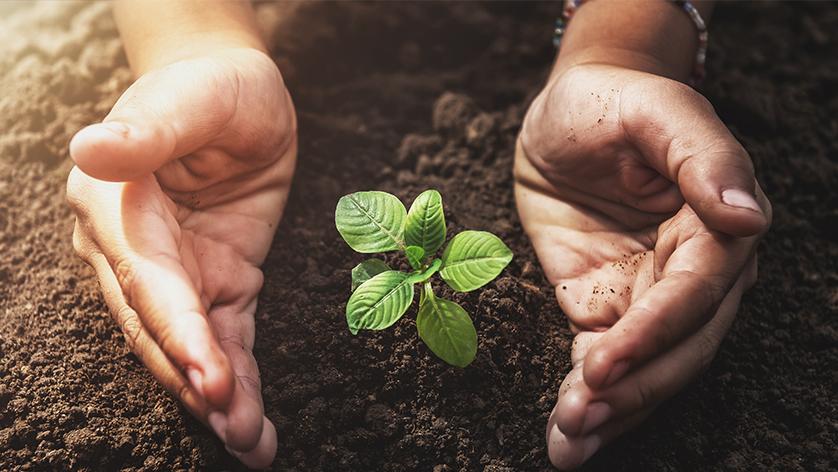 5 valores que debes cultivar durante tiempos difíciles