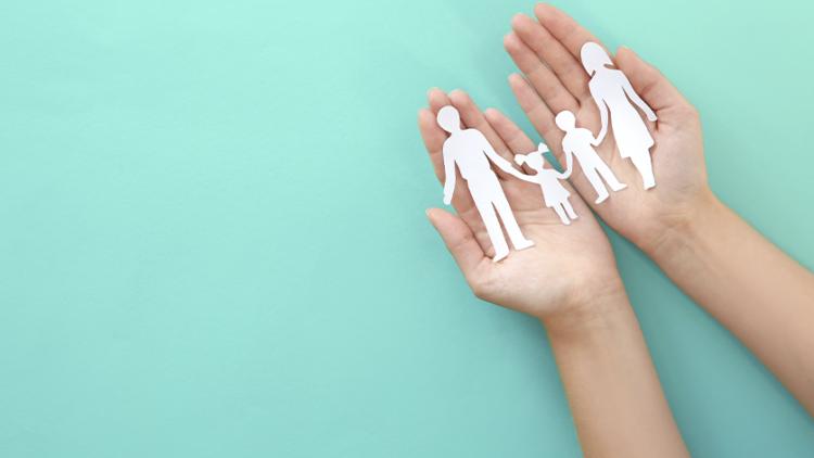 3 Plantas con increíbles beneficios para proteger a tu familia