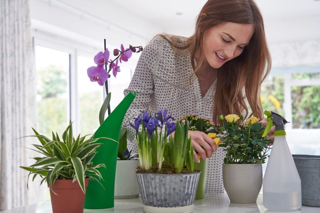 Mujer regando plantas dentro de casa durante el verano